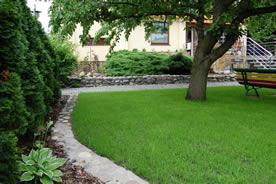 Żywozielony trawnik w małym ogrodzie