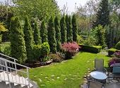 Miejski ogród