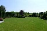 Ogród po kilku latach