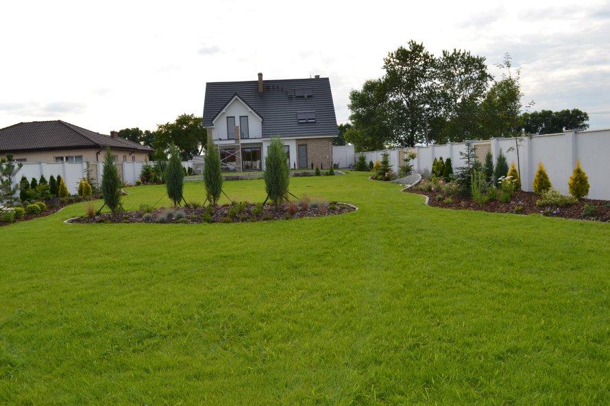 W centrum trawnika zaprojektowano teren pokryty roślinnościom, który w naturalny sposób dzieli dużą przestrzeń ogrodu. W przyszłości atrakcją tego fragmentu będą różne odmiany traw, wrzosów i wrzośców.
