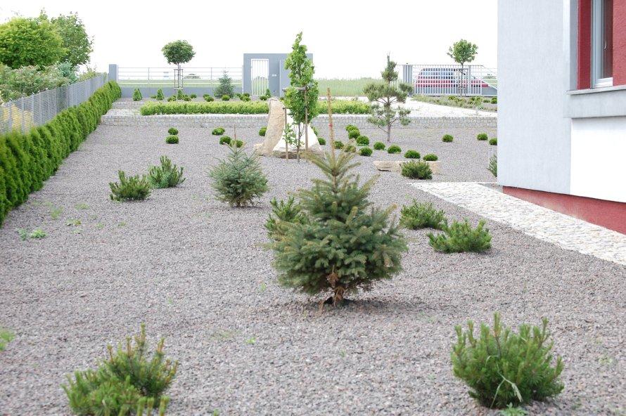W tym ogrodzie nawadnianie kropelkowe rozciągnięto pod warstwą wygłuszającą chwasty.