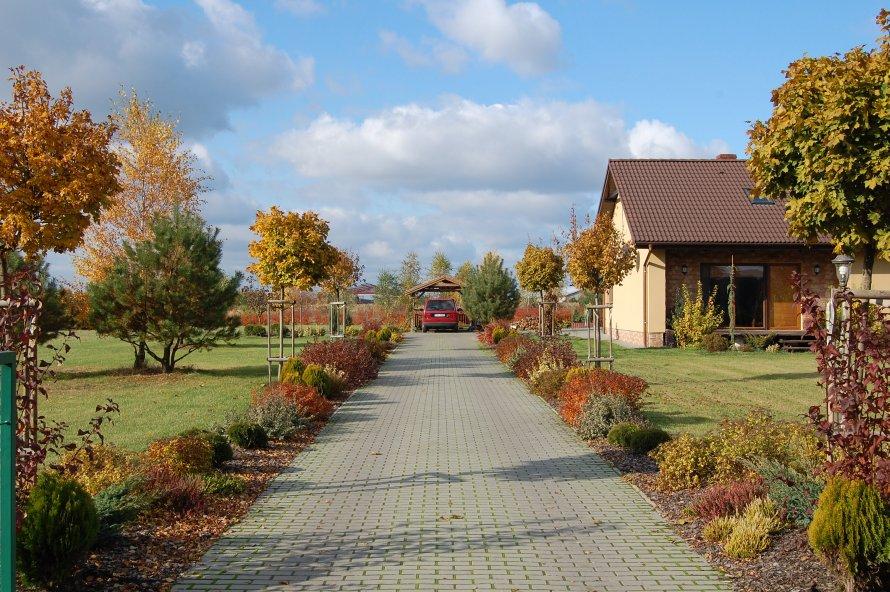 Ogród w barwach jesieni rok po założeniu.