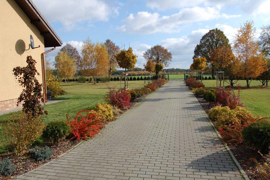 Odpowiedni dobór roślin powoduje, ze ogród jest ciekawy przez cały rok.