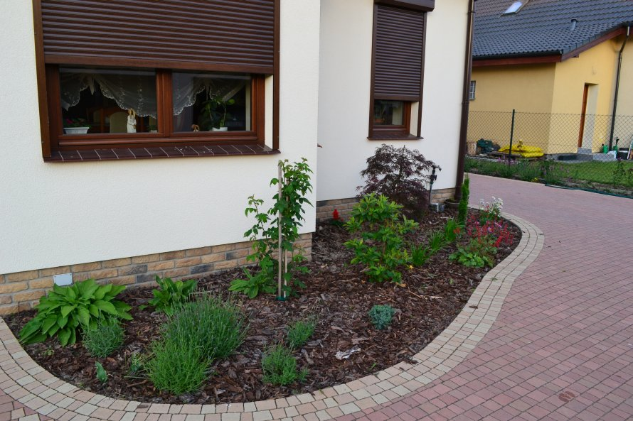 Byliny i rośliny wieloletnie pod okapem domu. Tu koniecznie jest nawadnienie kropelkowe.