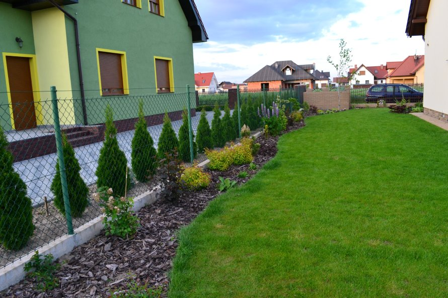 Zakładanie trawnika z rolki wymaga dobrego nawożenia, wtedy szybko się regeneruje.