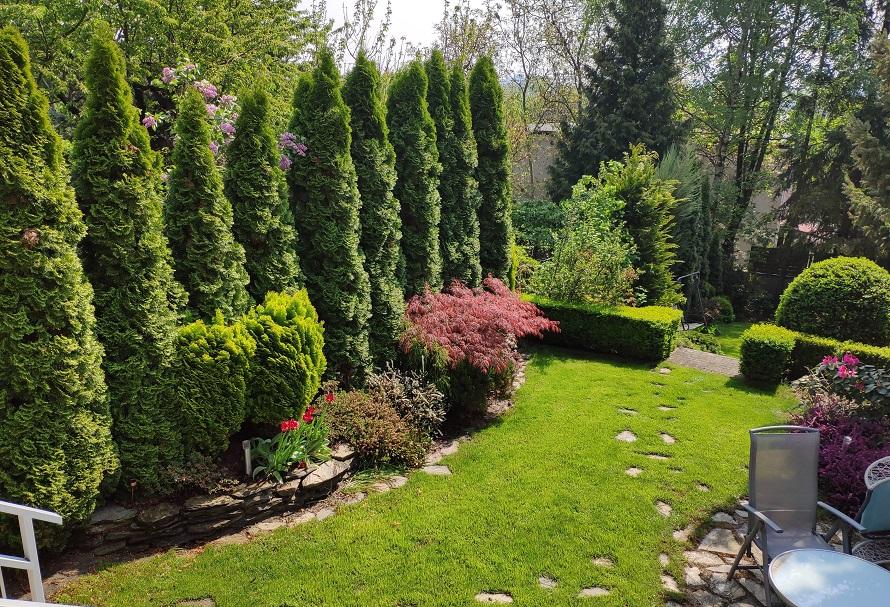 Projekt ogrodu i ścieżka z kamienia naturalnego.