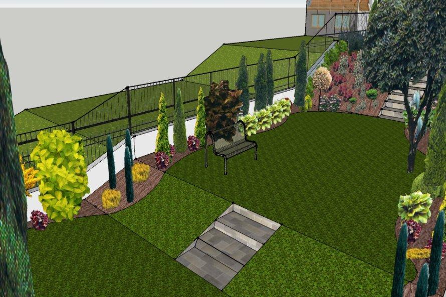 Niektóre z roślin w zaroślach zostaną wykorzystane przy zakładaniu ogrodu.
